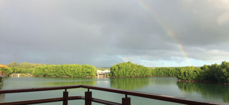 Rainbows In Cloudy Skies